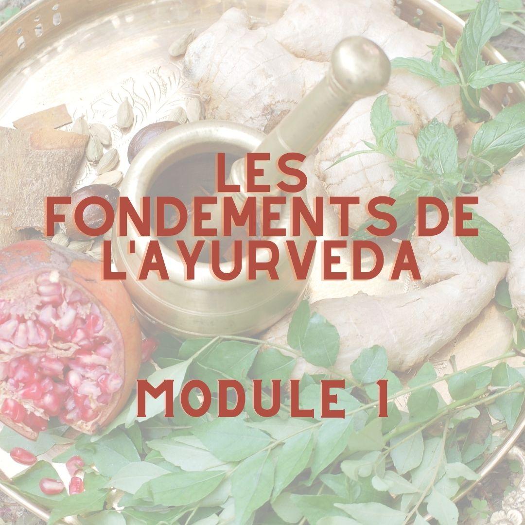Formation en ligne d'Ayurvéda – Module 1