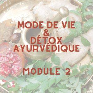 Formation en ligne d'Ayurvéda – Module 2